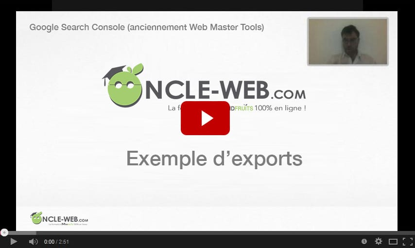 Exemple d'exports depuis ​Google Search Console (anciennement Web Master Tools)​